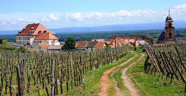 Guide pour un séjour réussi en Alsace